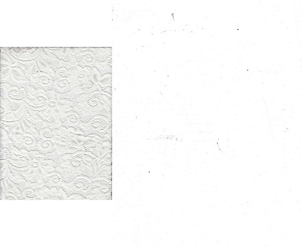 LACE-1138 / IVORY / 90% Nylon 10% Spn Heavy Lace